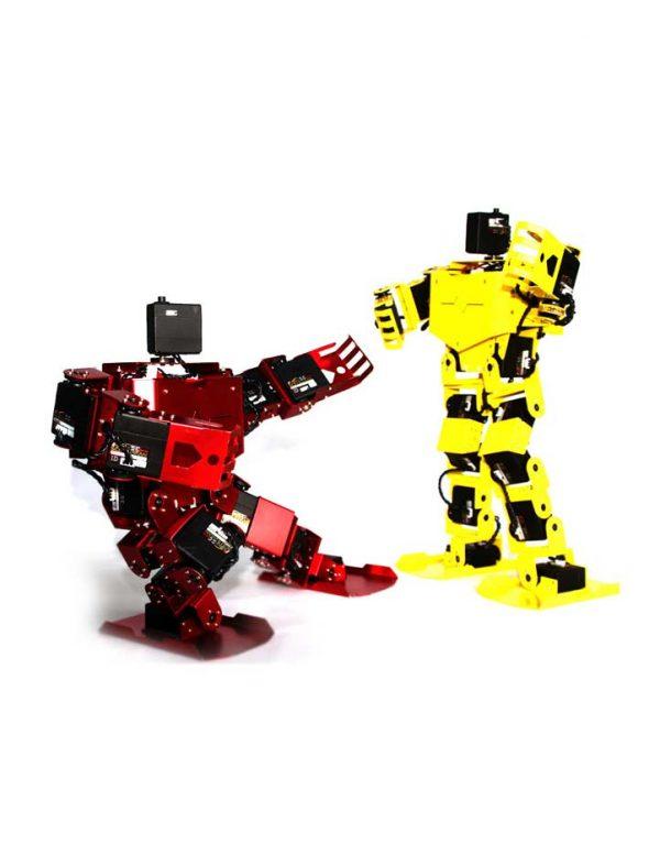 FEETECH 17DOF-SC-RTP BIPEDAL HUMANOID ROBOT